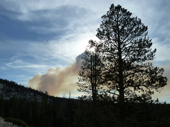 Fire along Tioga Rd near Tamarack Campground